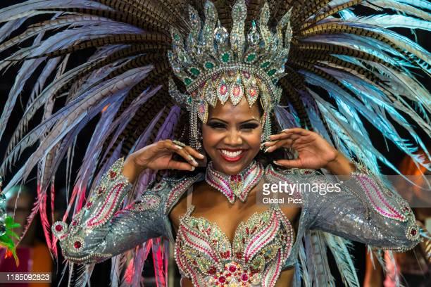 carnaval - brasil - cabalgata fotografías e imágenes de stock