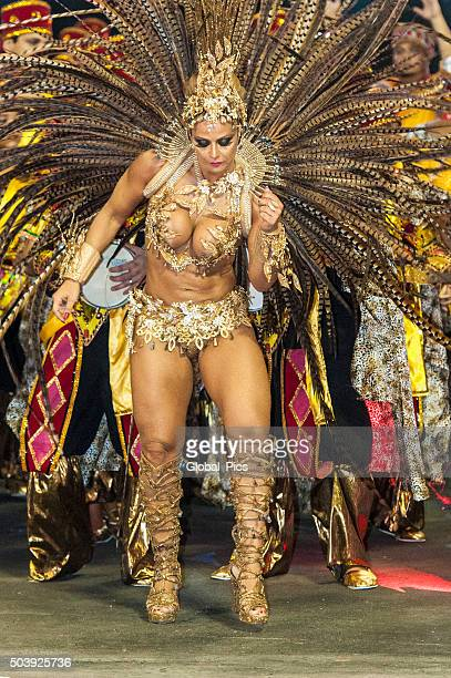 carnaval - brazil - mardi gras party stock photos and pictures
