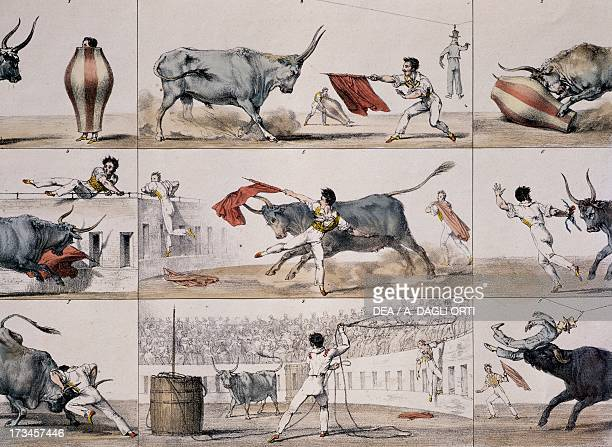 Carnival bullfight engraving by Antoine JeanBaptiste Thomas comes from Un an a Rome et dans ses environs France 19th century Rome Istituto Nazionale...