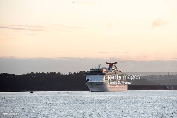 Carnival Cruise Line's Carnival Spirit arrives into Sydney Harbour with a spider on its bow in celebration of Halloween on October 30 2015 in Sydney...