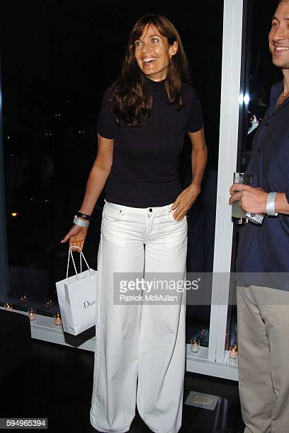 Carol Alt attends Afterparty for DIOR THE CINEMA SOCIETY's screening of Hart Sharp Entertainment Miramax Films' Proof at 165 Charles St on September...