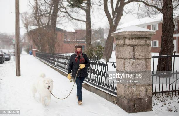 Carol De Tine walks her dog Champ in the snow on Tuesday morning in Portland's West End