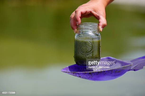 Carol Snyder of Northwood Ohio holds up a jar with water collected from Lake Erie at Maumee Bay State Park August 4 2014 in Oregon Ohio Toledo Ohio...