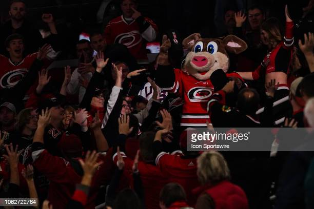 Carolina Hurricanes mascot Stormy gives away blankets to the crowd during a game between the Chicago Blackhawks and the Carolina Hurricanes at the...