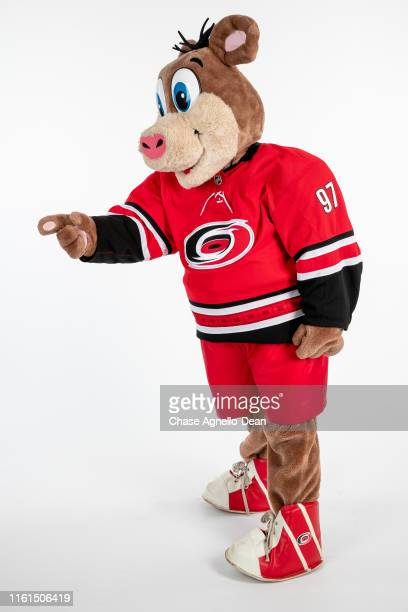 Carolina Hurricanes mascot Stormy poses for a portrait on August 13 2019 at the United Center in Chicago Illinois