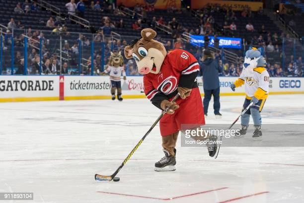 Carolina Hurricanes' mascot Stormy skates away from Nashville Predators' mascot Gnash and towards goal during the mascot game prior to the NHL...