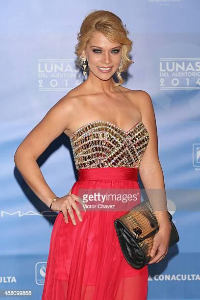 Carolina Miranda attends Lunas Del Auditorio Nacional 2014 at Auditorio Nacional on October 29 2014 in Mexico City Mexico