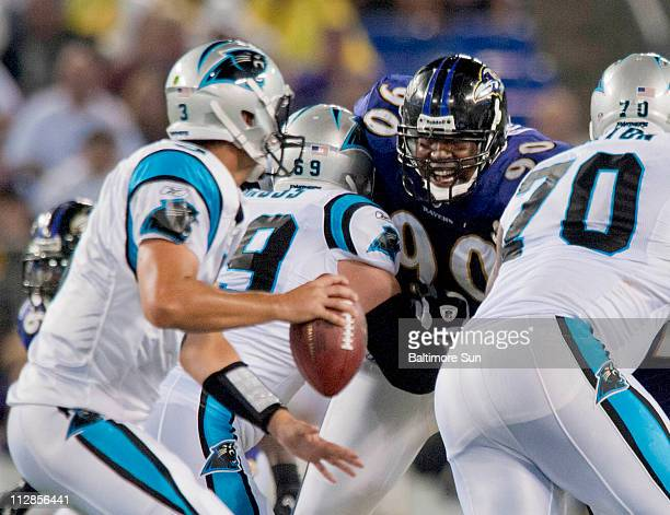 Carolina Panthers quarterback Matt Moore looks for an open receiver while tackle Gordon Gross blocks a snarling Baltimore Ravens defensive end Trevor...