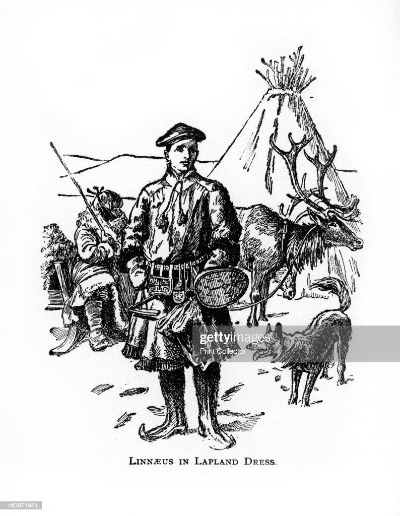 Carolus Linnaeus, 18th century Swedish botanist, physician and zoologist, (20th century). Linnaeus in Lapland. Linnaeus (Carl von Linne) (1707-1778) founded the modern system of plant and animal nomenclature.