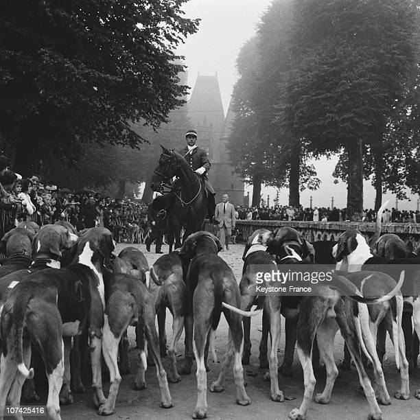 Carouge Castle Hunting Ceremony With The Dogs In Normandy In France During Fifties