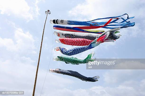 carp streamer blowing in wind, low angle view - 鯉のぼり ストックフォトと画像