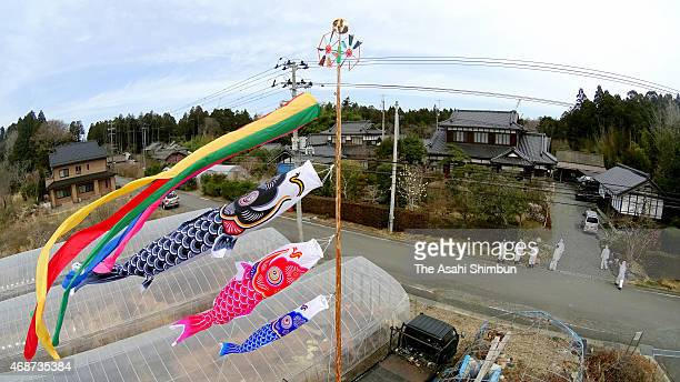 Carp streamers are hoisted in front of the home of Hisatomo Suzuki, on April 4, 2015 in Okuma, Fukushima, Japan. Suzuki has long dreamed of the day...