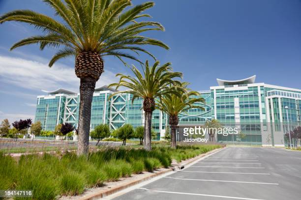 Carpark of an office building with palm trees