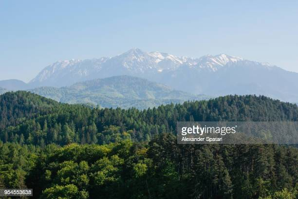 carpathian mountain range with snowy peaks, hills and green forest - transylvania stock pictures, royalty-free photos & images