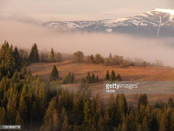 carpathians in the spring. - ukraine stock pictures, royalty-free photos & images