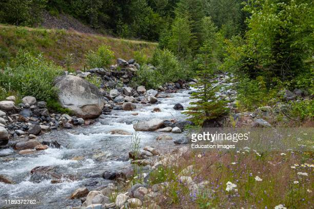 Carpenter Creek flowing through abandoned mining ghost town of Sandon Slocan Valley West Kootenay British Columbia Canada