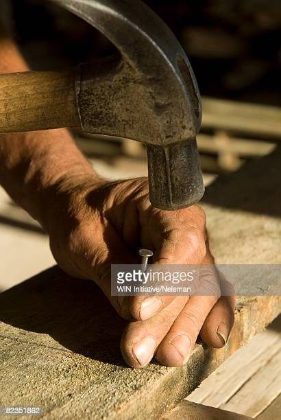 Carpenter fixing a nail on a wooden plank with a hammer, Salto, Uruguay