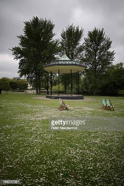 A carpet of daisies surrounds Regent's Park bandstand on May 22 2013 in London England Anthony Downey has today been charged with the 1982 Hyde Park...