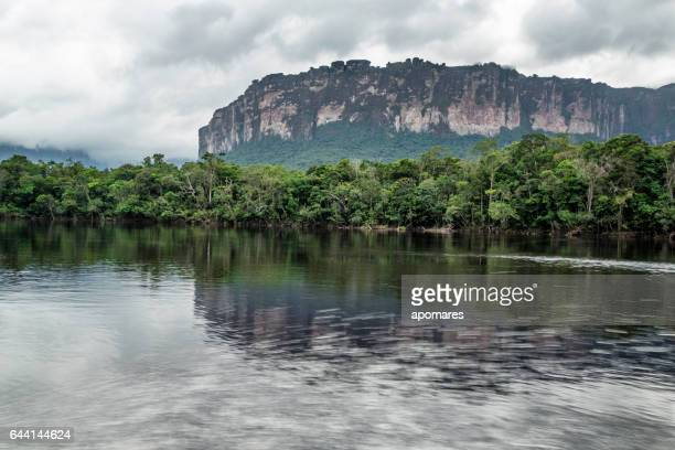 carrao river at orquidea island and auyan-tepui. canaima national park - angel falls stock photos and pictures