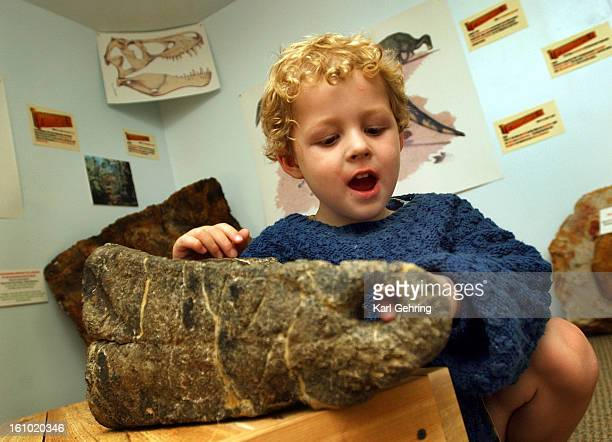 Carrett ArturoCowdell <cq> age 4 poked his finger through a hole in a hipbone fossil from an Allosaurus Saturday at the Morrison Natural History...