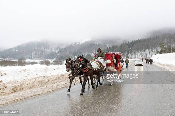 Carriage at Abant in winter, Bolu Turkey