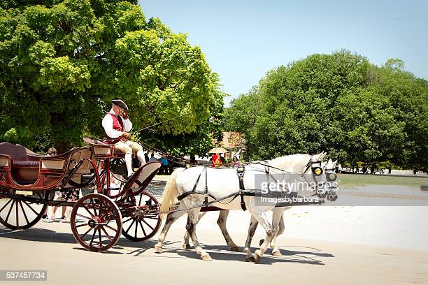 carriage driver - colonial williamsburg stock photos and pictures