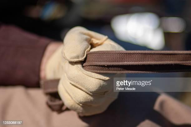 carriage driver's hand - 手綱 ストックフォトと画像