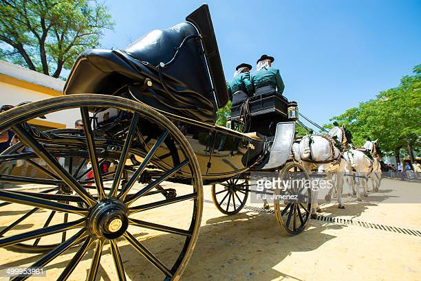 Carriage horse Typical of andalucia