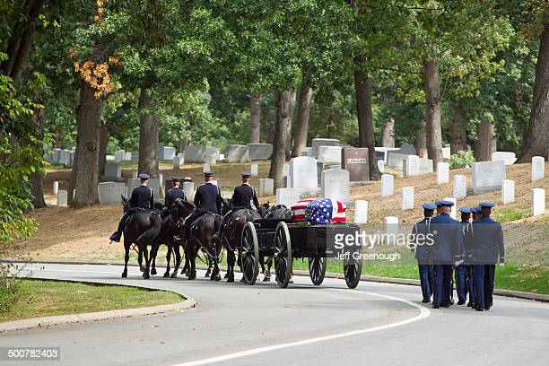 carriage pulling casket to military cemetery - memorial event stock pictures, royalty-free photos & images