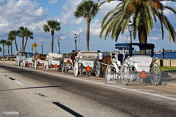 carriage ride - st. augustine florida stock photos and pictures