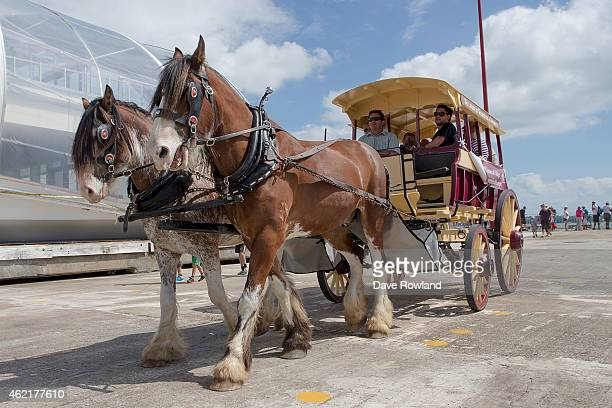 Carriage rides on Queens Wharf provided by Howick Historical Village as part of the Auckland Anniversary Day Regatta on January 26 2015 in Auckland...