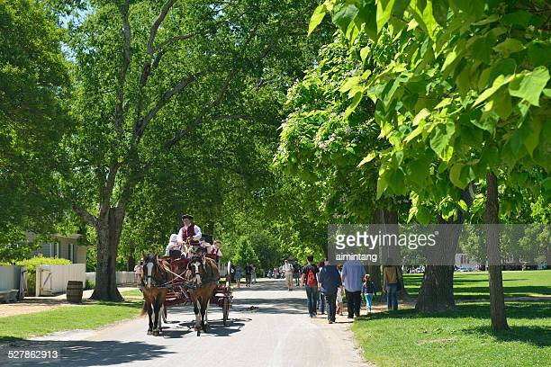 carriage riding in williamsburg of virginia - williamsburg virginia bildbanksfoton och bilder