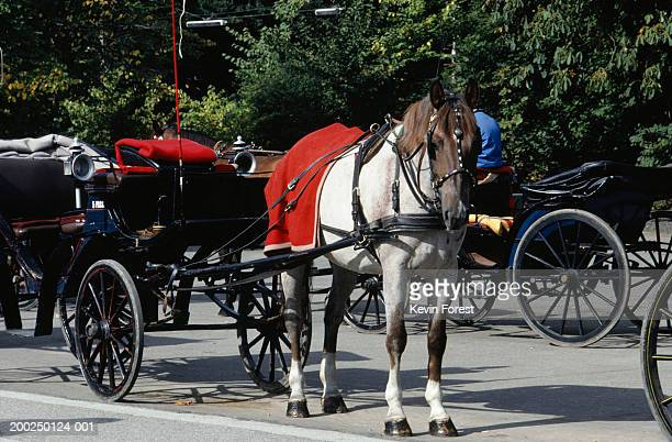 Carriage with horse, Denmark