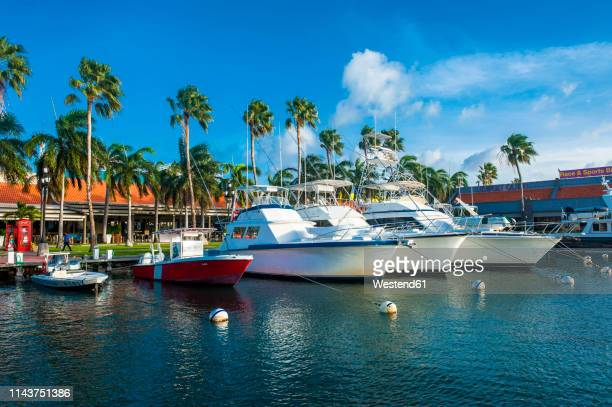 carribbean, aruba, oranjestad, yacht harbour in downtown - oranjestad stockfoto's en -beelden