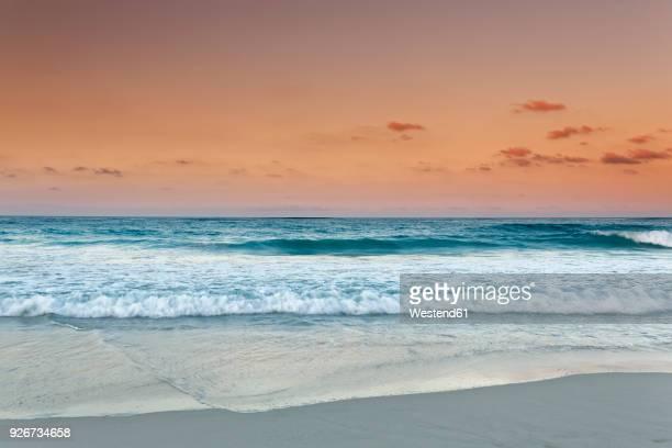 carribean, dominican republic, punta cana, playa bavaro, view to the sea at sunset - punta cana fotografías e imágenes de stock