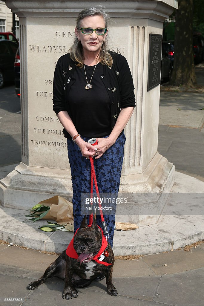 Carrie Fisher attends a photocall as campaigners submit an 11 million signature petition calling for an end to China's Yulin dog meat festival at Chinese Embassy London on June 7, 2016 in London, England.