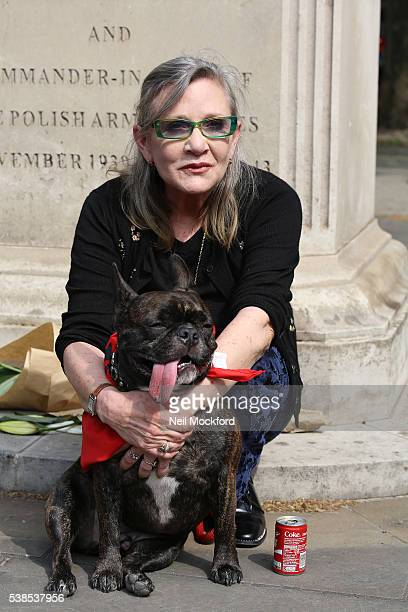 Carrie Fisher attends a photocall as campaigners submit an 11 million signature petition calling for an end to China's Yulin dog meat festival at...