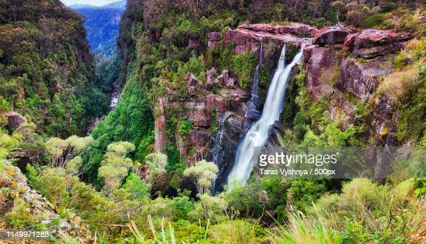 carrington falls - papua new guinea stock pictures, royalty-free photos & images