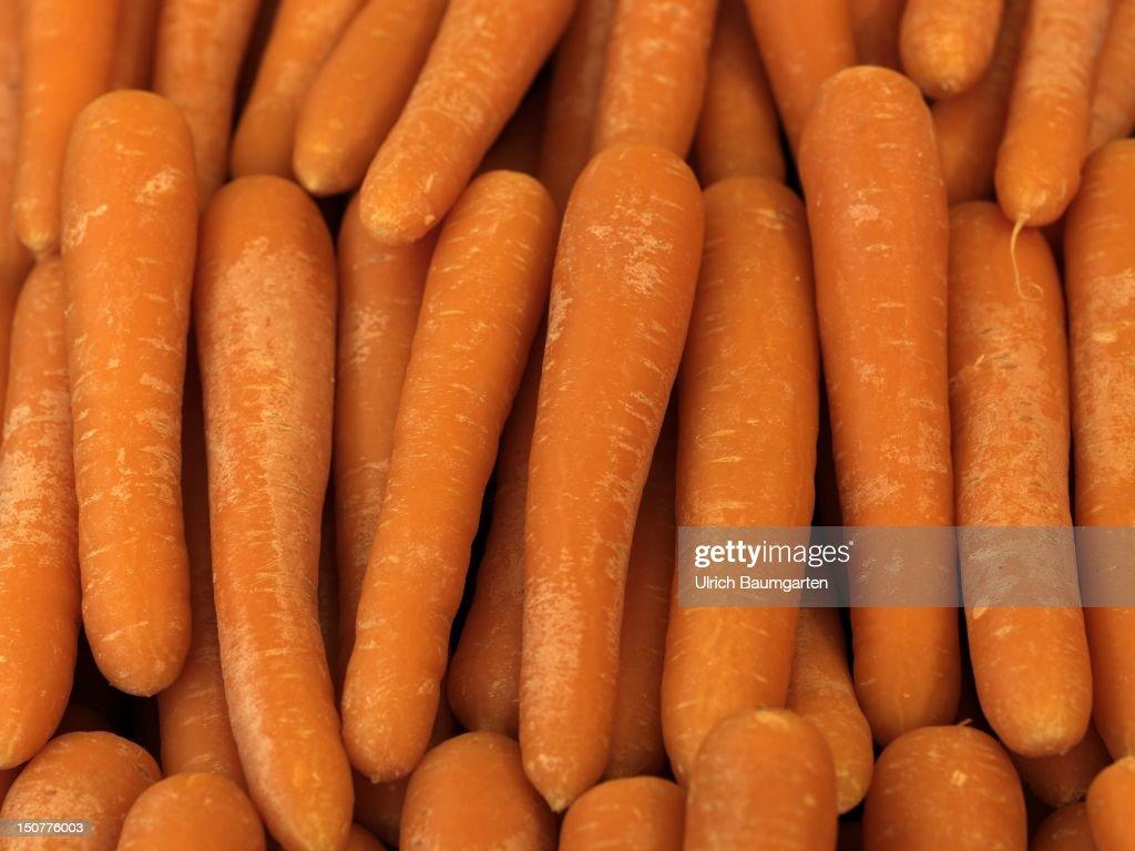 GERMANY, BONN, Carrot (Daucus carota Lat,), carrots from the Netherlands, [digital medium format photography]