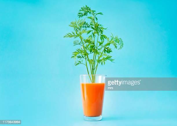 carrot juice - vegetais - fotografias e filmes do acervo