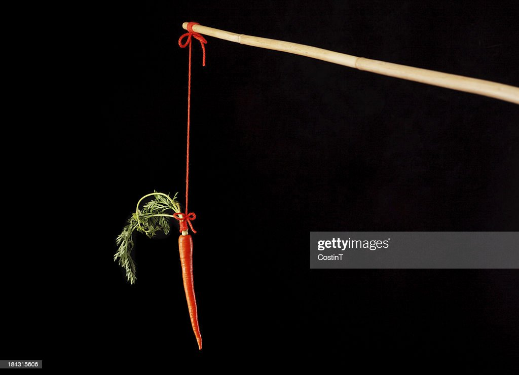 Carrot on a stick : Stock Photo