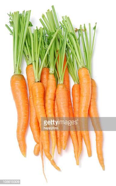 Cenoura em branco