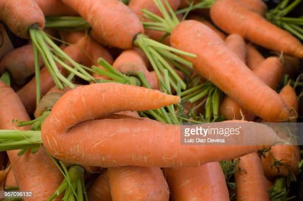 carrot with dildo shape - consolador fotografías e imágenes de stock