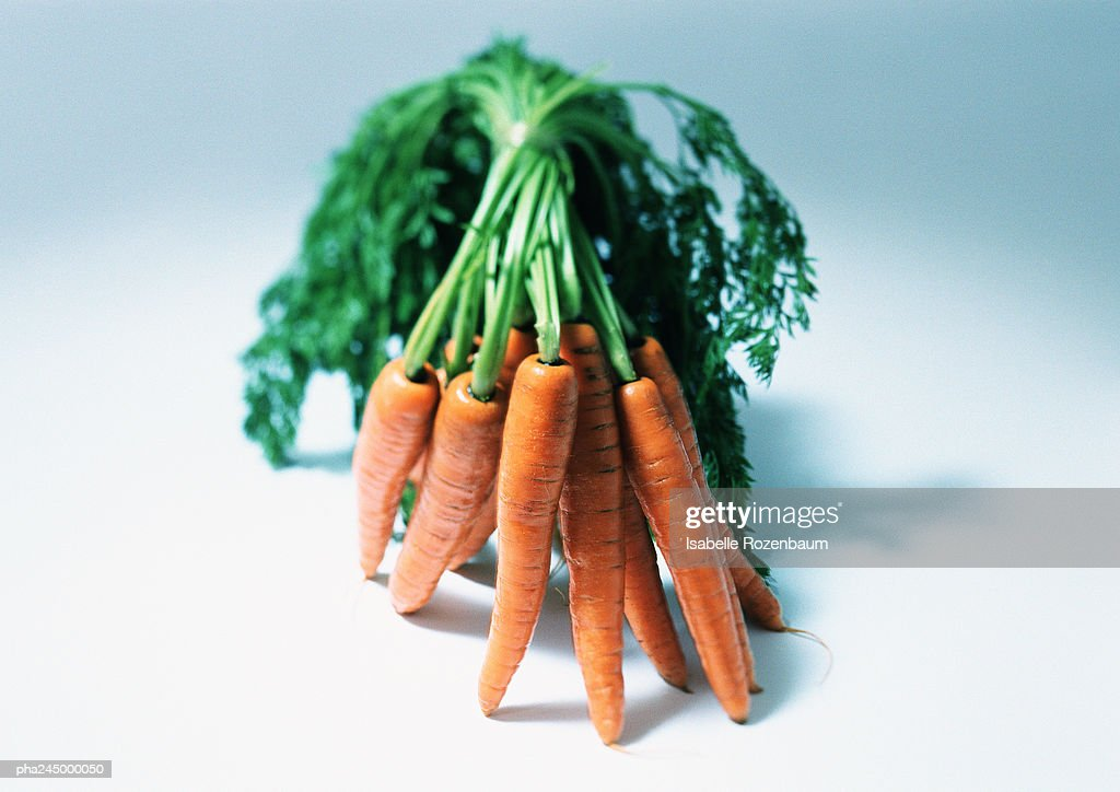 Carrots, close-up : Bildbanksbilder