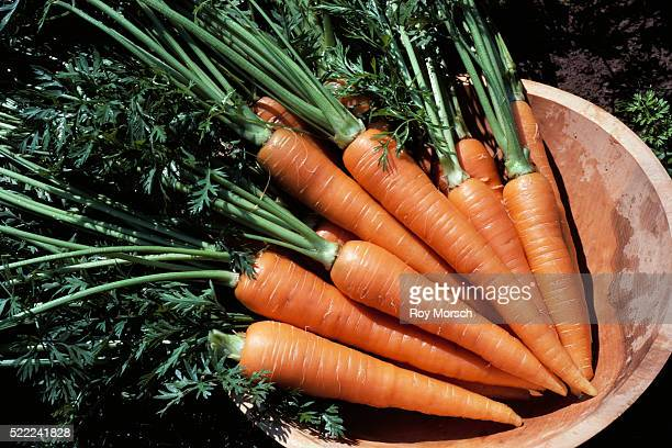 carrots in bowl - carrot stock pictures, royalty-free photos & images