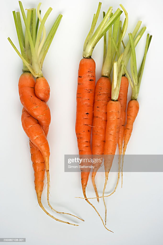 Carrots on white background, two twisted together : Stock Photo