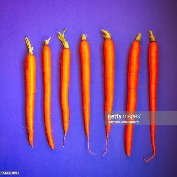 carrots - サンブルーノ ストックフォトと画像