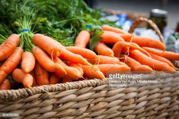 carrots - vanessa van ryzin foto e immagini stock