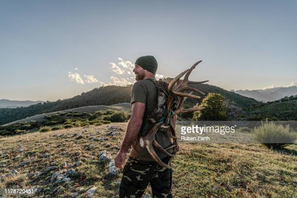 carrying deer antlers in the mountains - hunting stock pictures, royalty-free photos & images