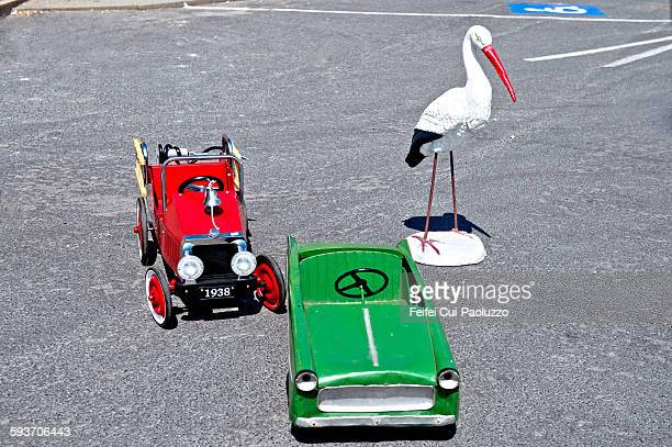 Cars and bird at barfleur Manche France